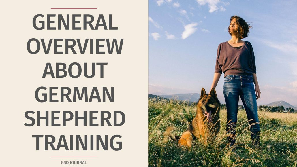 General Overview About German Shepherd Training